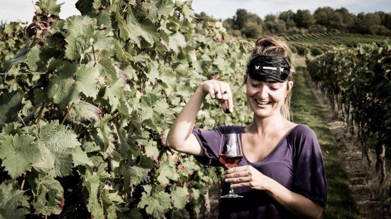 Weinprobe Sensorik Kurs